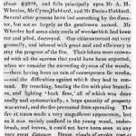 Henry David Thoreau: The Woods Burner