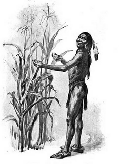 Illustration of Squanto demonstrating how well the pilgrim's corn grew, circa 1911