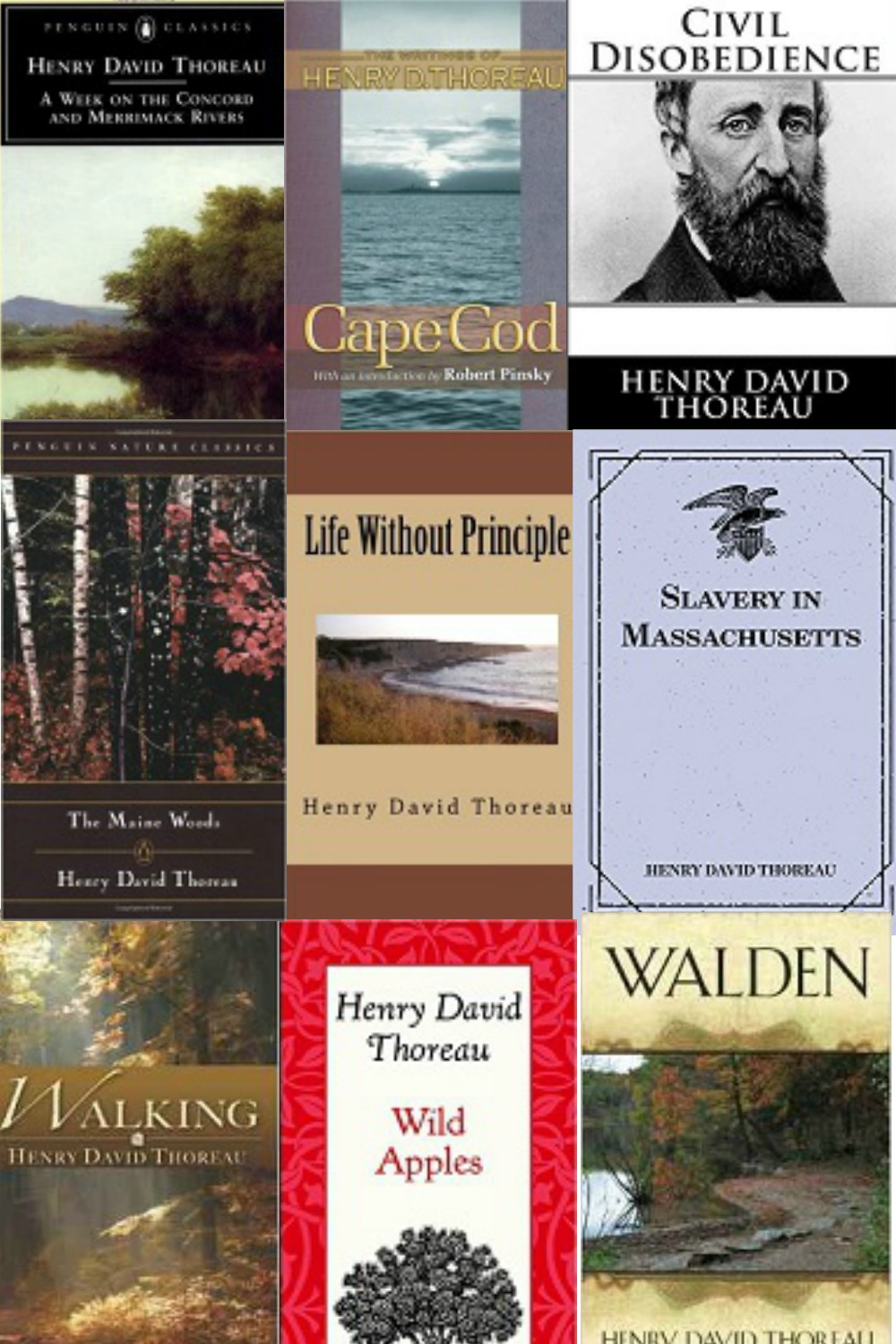 an introduction to the literature by thoreau Introduction to the text structure this book is not a novel, a narrative poem, or a play there is no clear story line, no plot line nor is it autobiography, although much of it is based on thoreau's life at walden pond.