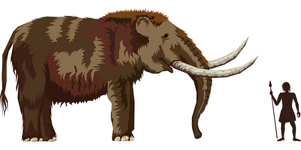 Mammoth and a Paleoindian